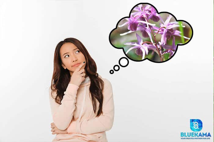 Does Horny Goat Weed work for women