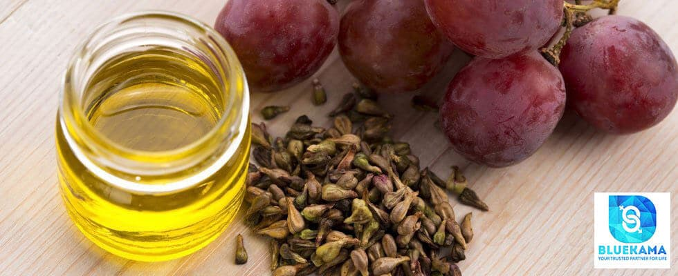 What is grape seed extract?