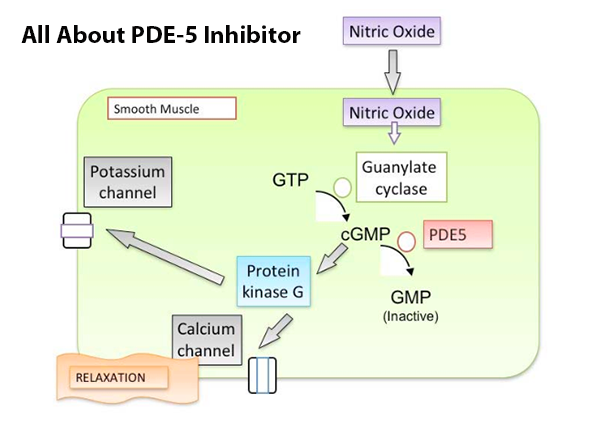 All-About-PDE-5-Inhibitor